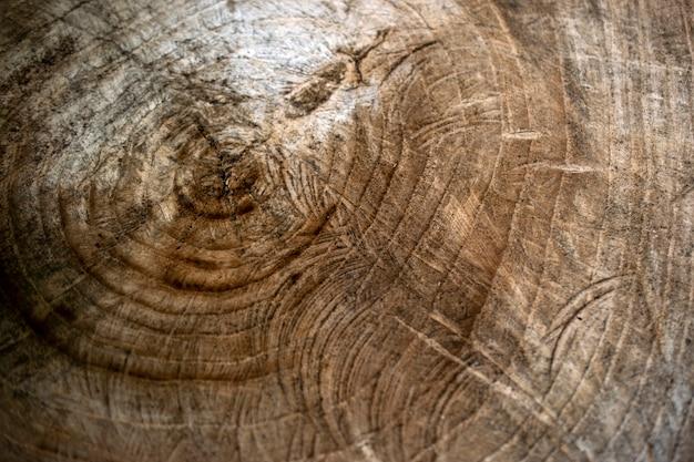 Texture du bois. gros bu d'un arbre. vieille texture de souche d'arbre