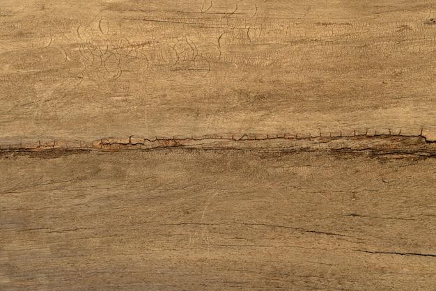 Texture du bois sec non traité