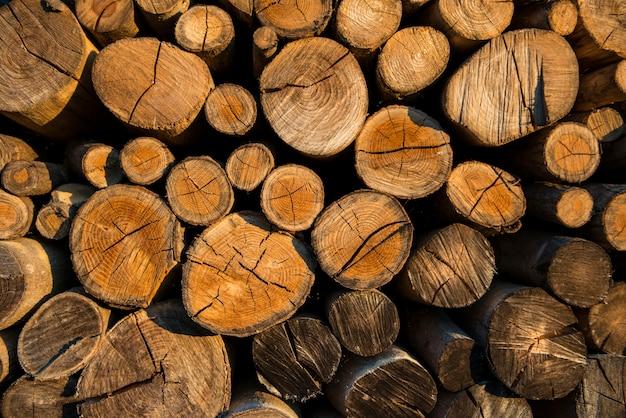 Texture du bois vieillie avec la section transversale d'un fond coupé en rondins.
