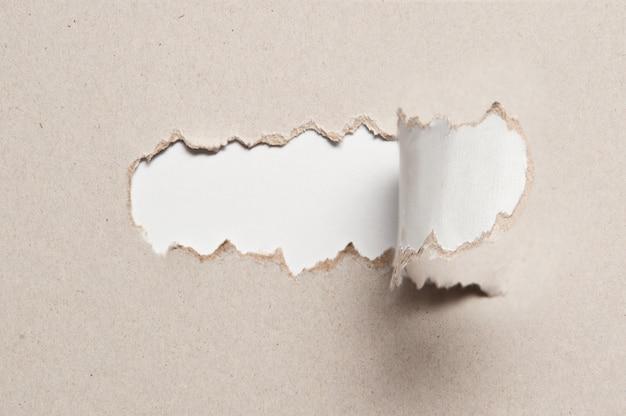 Texture du papier avec un demi-morceau déchiré du milieu