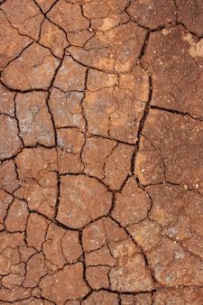 Texture du sol séchée