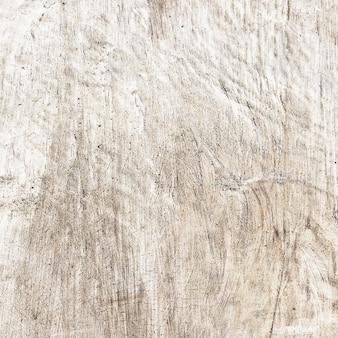 Texture du tronc coupé