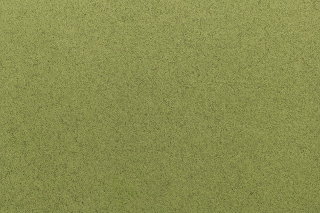 Texture du vieux gros plan de papier vert clair. structure d'un papier peint en carton dense mat. fond de feutre olive