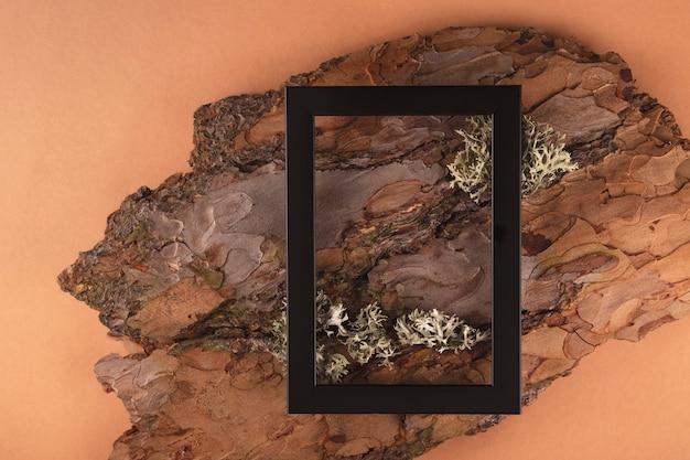 Texture d'écorce d'arbre dans le cadre d'un mur naturel