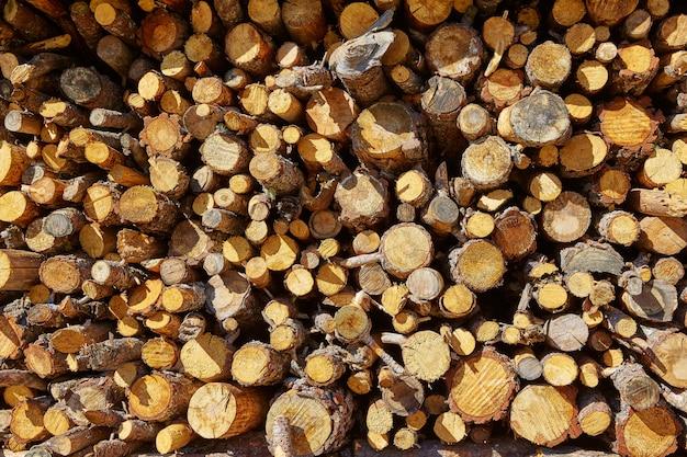 Texture de feu de bois de chauffage