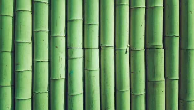 Texture de fond de bambou