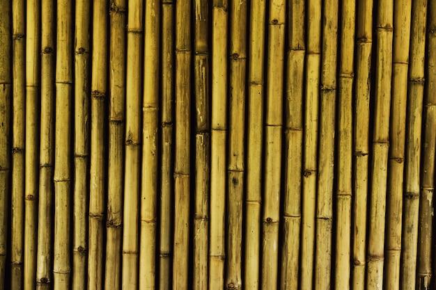 Texture de fond bois, résumé, fond de nature