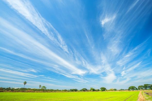 Texture de fond de ciel bleu avec des nuages blancs.