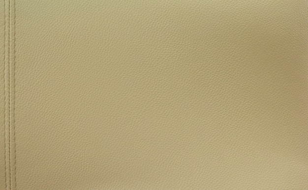 Texture de fond en cuir