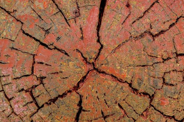 Texture de fond du tronc en bois peint