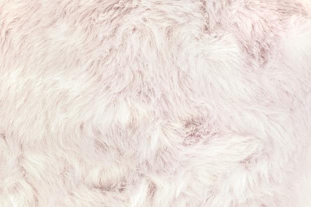 Texture de fond de fourrure shaggy.