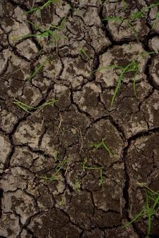 Texture et fond de fracture du sol