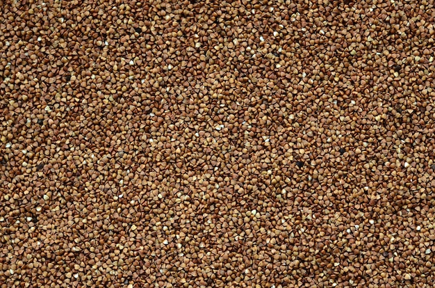 Texture de fond d'un gros tas de sarrasin. de nombreux grains de sarrasin en gros plan en plein jour
