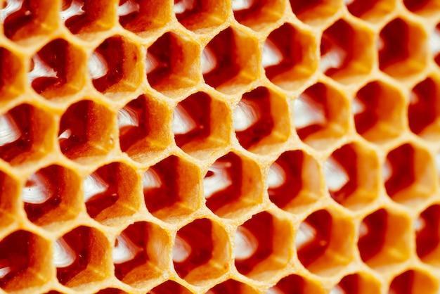 Texture de fond et motif d'une section de nid d'abeille de cire d'une ruche d'abeilles remplie d'or