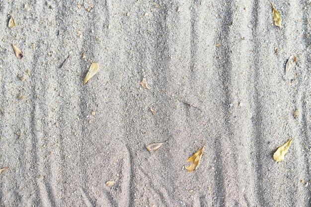 Texture de fond de sable avec des feuilles d'automne sèches