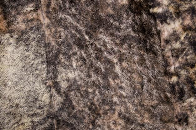 Texture de fourrure se bouchent.