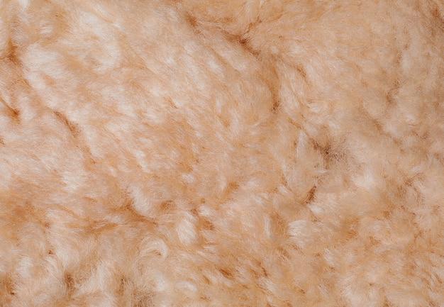 Texture fourrure