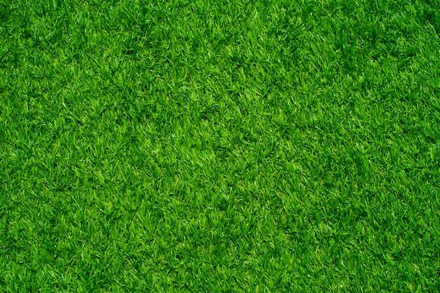 Texture de gazon artificiel