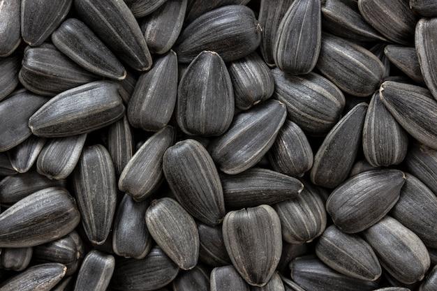 Texture de graines de tournesol ou de fond.