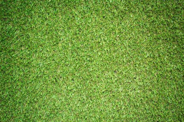 Texture d'herbe pour le fond
