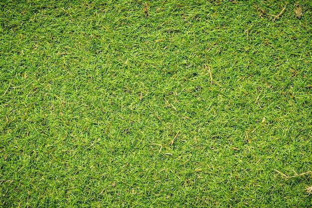 La texture de l'herbe verte artificielle peut être utilisée comme arrière-plan