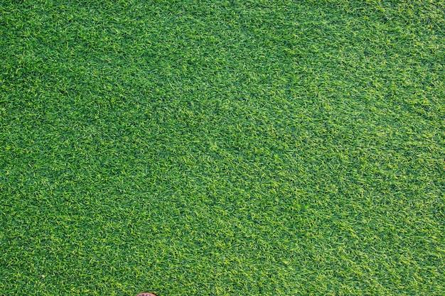 Texture d'herbe verte artificielle pour la décoration intérieure et extérieure