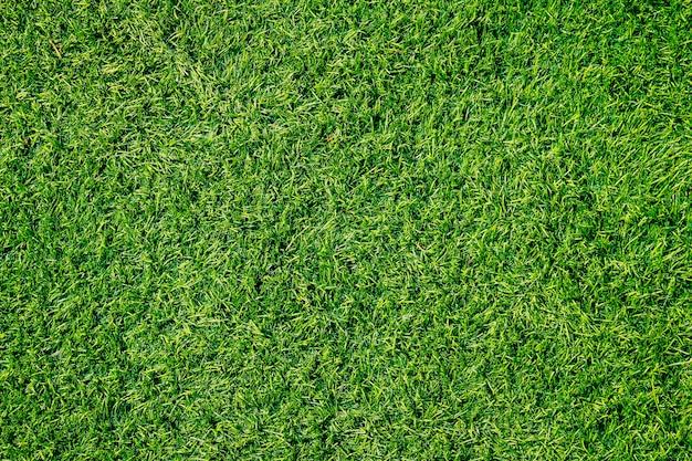 La texture de l'herbe verte avec filtre vintage peut être utilisée comme arrière-plan