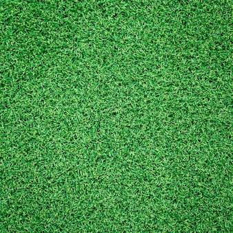 La texture de l'herbe verte peut être utilisée comme arrière-plan
