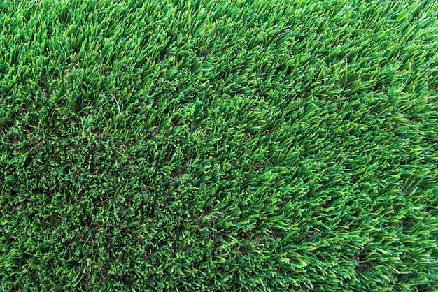 Texture herbe verte