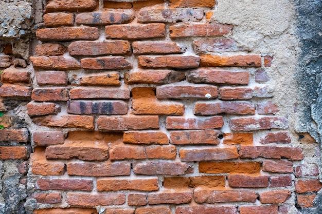 Texture de mur de brique rouge ancienne et feuille verte suspendue sur elle au bord.