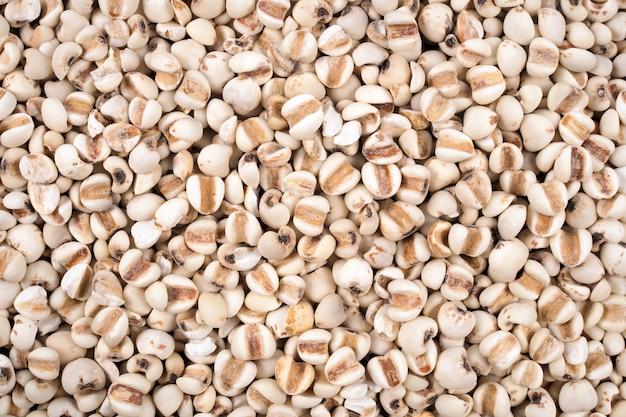 Texture naturelle de grains de mil biologiques pour le fond