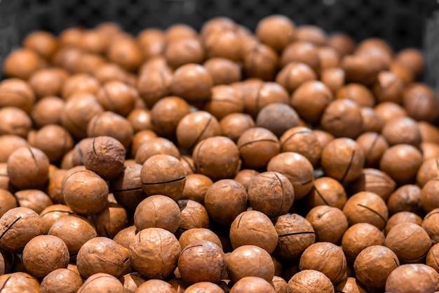 Texture de noix ou de noix de macadamia avec coquille