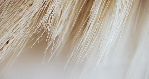Texture de nombreuses fibres légères