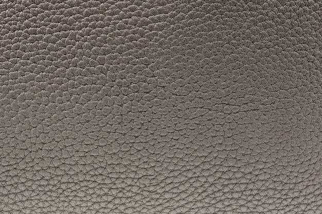 La texture de la peau est grise