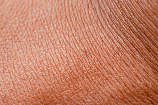 Texture de la peau. peau foncée de macro main femme.