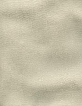 Texture de peau photo couleur grise