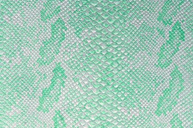 La texture de la peau de serpent en nuance de couleur