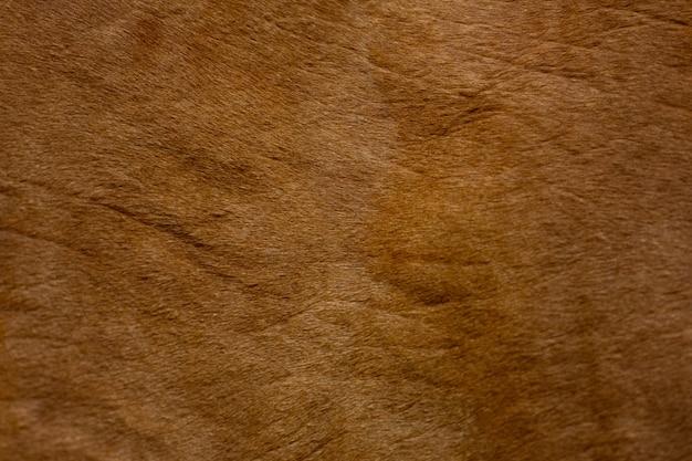 Texture de la peau d'une vache rouge, gros plan. produit naturel.