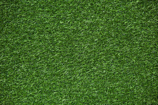 Texture de pelouse verte, fond d'herbe verte