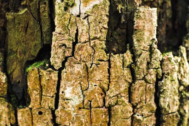 Texture de pierre de bois ancien et grunge