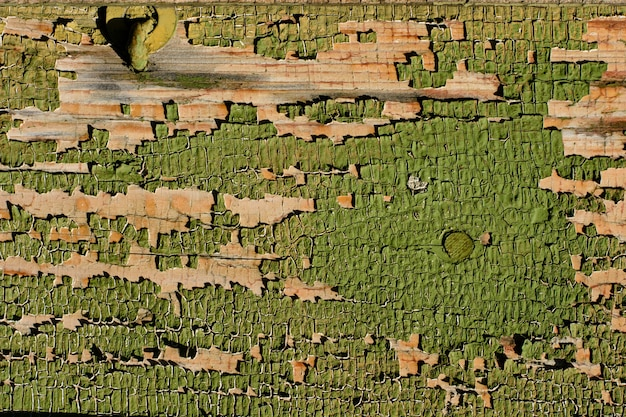 Texture de planche de bois peint en vert vieux patiné fissuré,