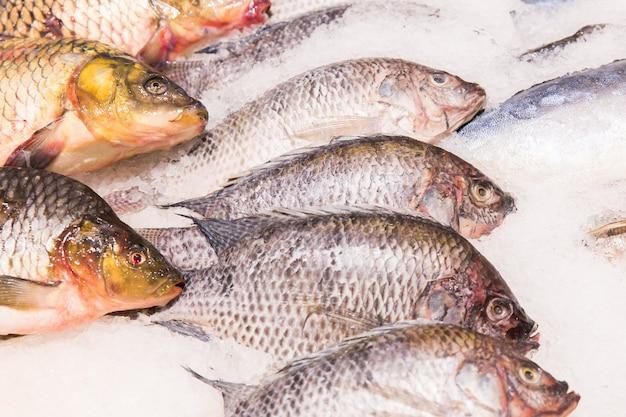 Texture de poisson sur le marché. poisson dans la boutique