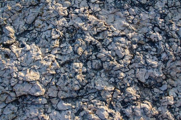 Texture de la roche sur la côte de kamenjak en istrie, croatie