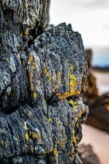 Texture de roche noire, vue rapprochée