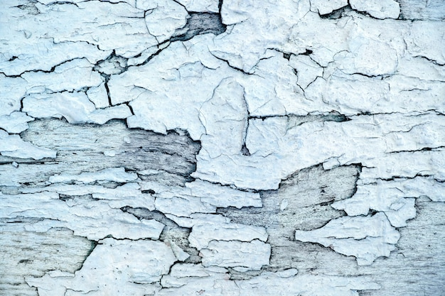 Texture rugueuse, surface en bois vieillie et grunge en couleur bleu blanc