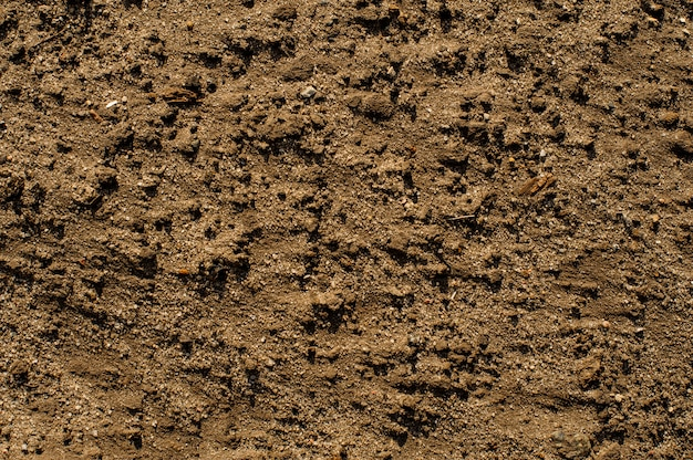 Texture de sable humide pour l'image d'arrière-plan