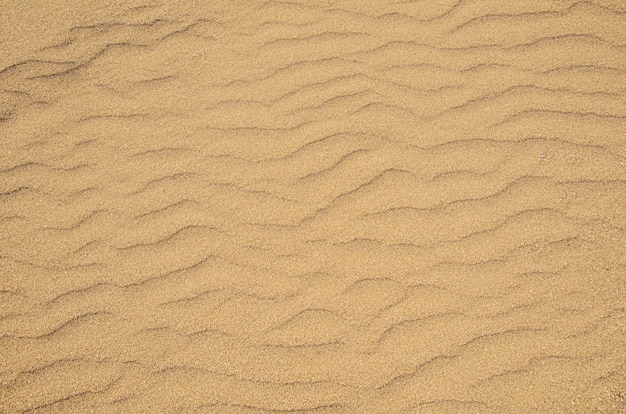 Texture de sable jaune grossier sur le fond de la plage