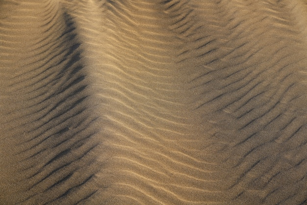 Texture de sable de la plage des dunes sur la costa dorada
