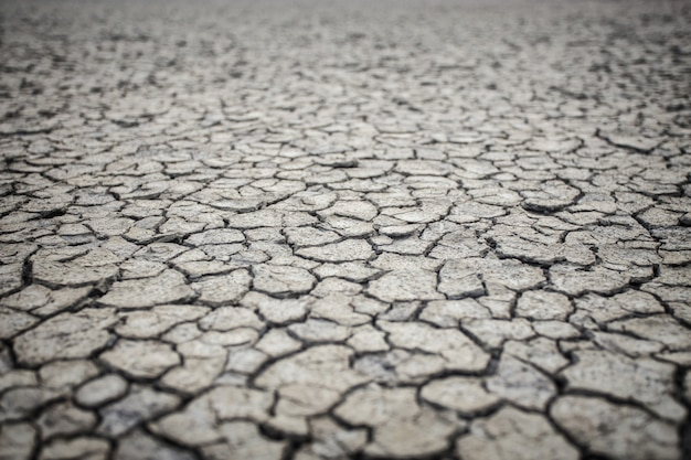 Texture de sol sec