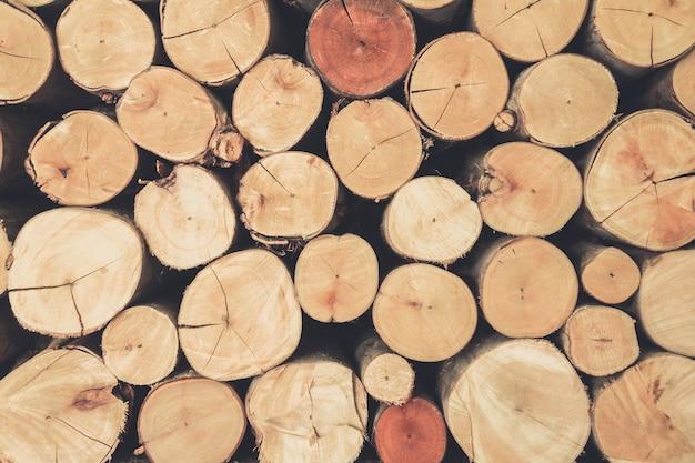 La texture de la souche de bois peut être utilisée comme arrière-plan